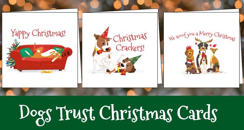 Get Your Dogs Trust Christmas Cards Today