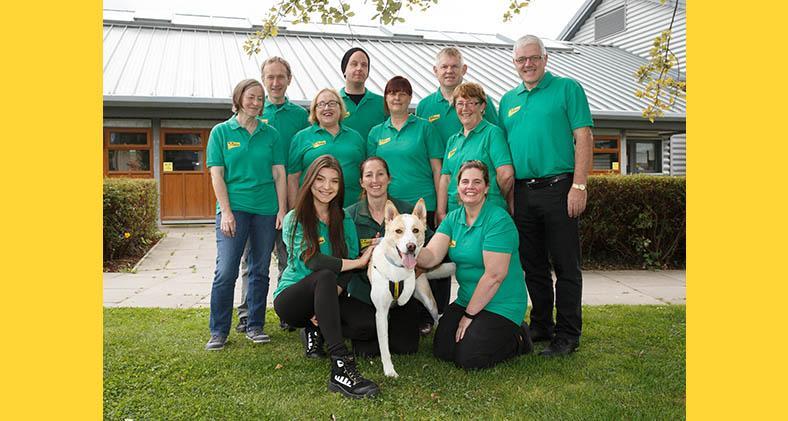 Dog Rescue Volunteering | Dogs Trust