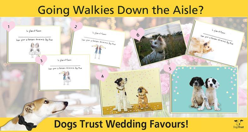 dogs trust wedding favour cards dogs trust